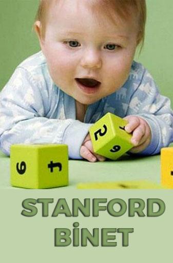 Stanford Binet Zekâ Testi Uygulayıcı Eğitim Programı