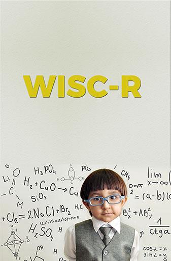 WİSC-R Zeka Testi Uygulayıcı Eğitim Programı